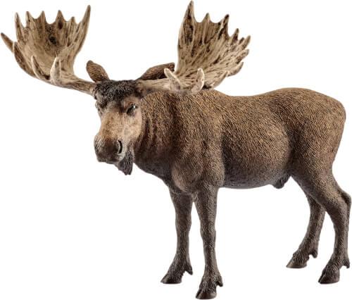 Schleich Wild Life - 14781 Elch Bulle, ab 3 Jahre