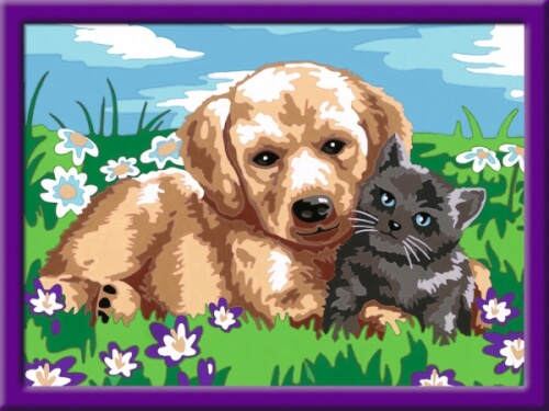 Ravensburger 277896 Malen Nach Zahlen Serie D Hund Und Katze 277896