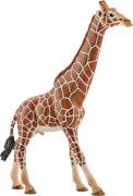 Schleich Wild Life - 14749 Giraffenbulle, ab 3 Jahre
