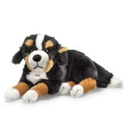 Steiff Senni Berner Sennenhund, schwarz/braun/weiß, liegend, 45 cm