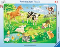 Ravensburger 61198 Rahmenpuzzle Tiere auf der Wiese, 35 Teile