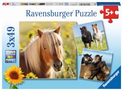 Ravensburger 08011 Kinderpuzzle Liebe Pferde 3 x 49 Teile