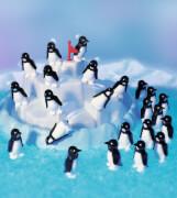 Ravensburger 212880  Plitsch-Platsch Pinguin