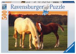 Ravensburger 143474 Puzzle Schöne Pferde 500 Teile