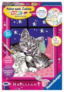 Ravensburger 27995 Malen nach Zahlen: Schlafende Katzen
